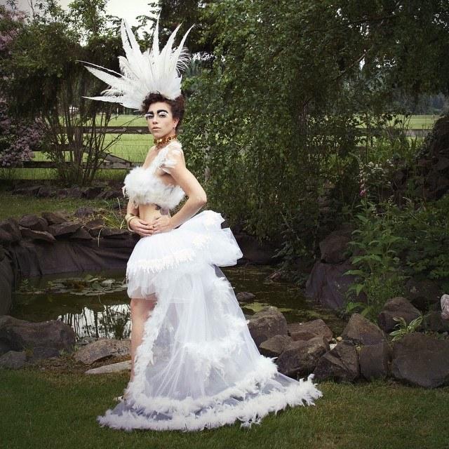 Swan (4)
